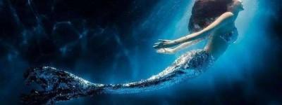 美人鱼百度云电影免费观看