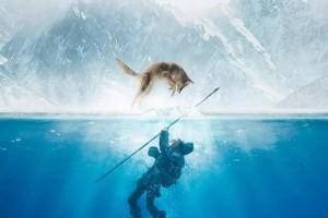 阿尔法:狼伴归途百度云[720p/1080pHD高清中字]完整版未删减资源