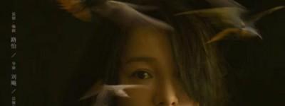 不完美的她百度云资源「/1080p/高清」云网盘