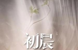 与晨同光百度云【1080p网盘资源分享】